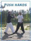 Push Hands Martial Arts Schattenboxen